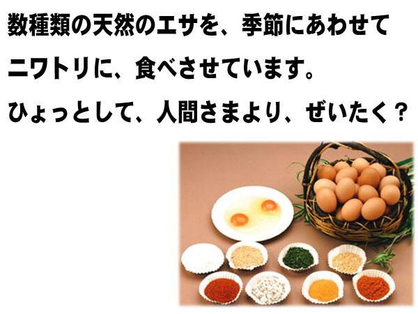 卵の一番大事な決めては餌!