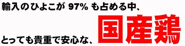 輸入のひよこが97%も占める中貴重な国産鶏